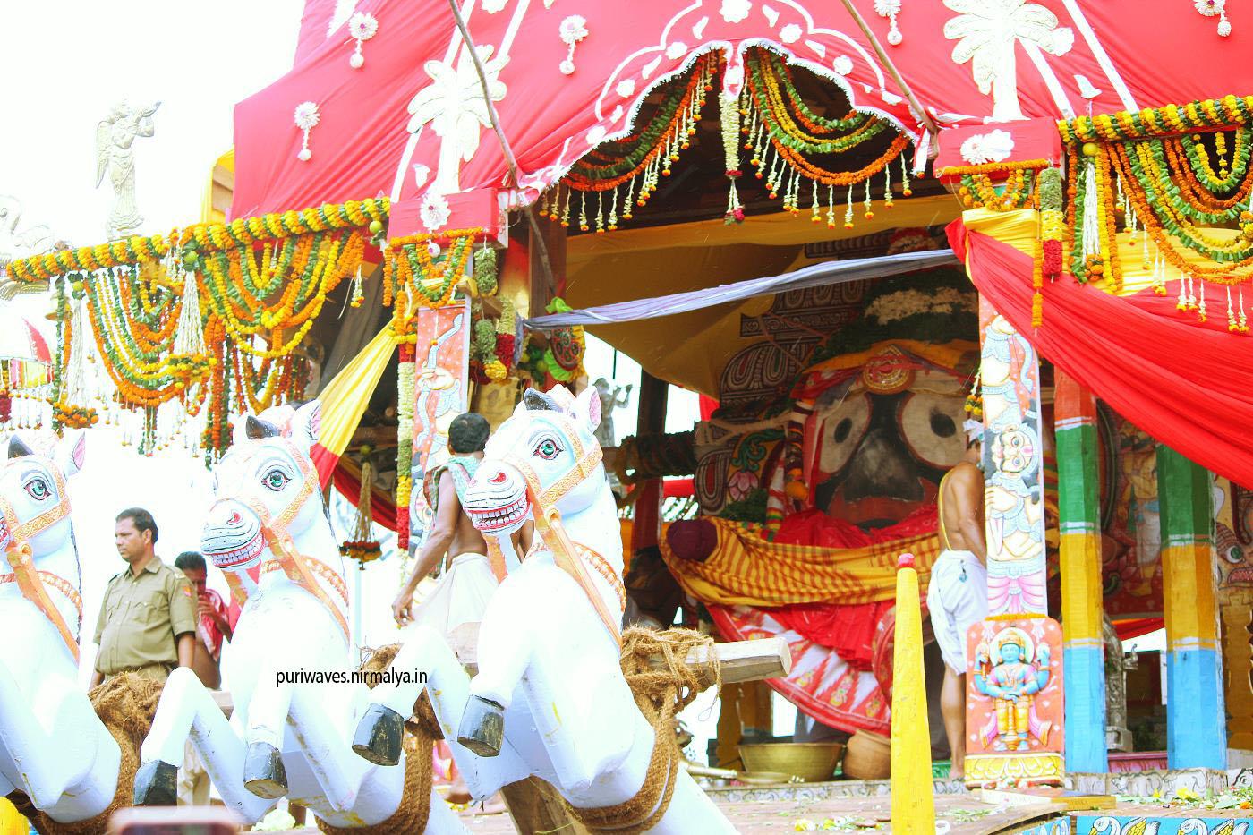 Ratha Jatra ( Yatra ) Odisha Puri 2019